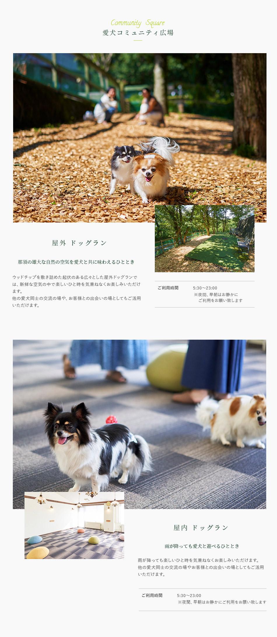 愛犬コミュニティ広場