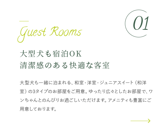 大型犬も宿泊OK清潔感のある快適な客室 詳細はこちら